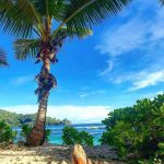 Relaxing at Seychelle beach